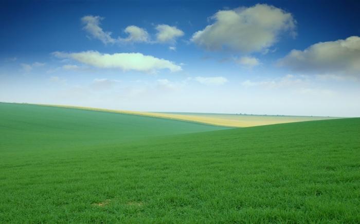 green_field_wallpaper-wide